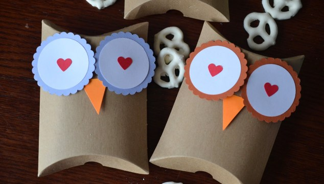 Owl Pillow Gift Boxes - DIY Craft
