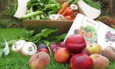 Mixed Fruit and Veg Box Review with Abel & Cole