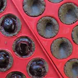 Finest Cherry Truffles 1