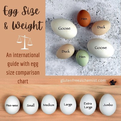 Egg Size and Weight – An international guide with egg size comparison chart