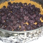 Blueberry Cheesecake 1