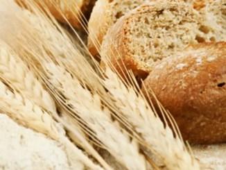 Bread Wheat Flour