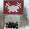 Reindeer Noses1
