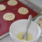 Sand Dollar Cookie2
