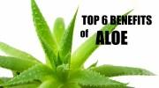 TOP 6 HEALTH BENEFITS OF ALOE