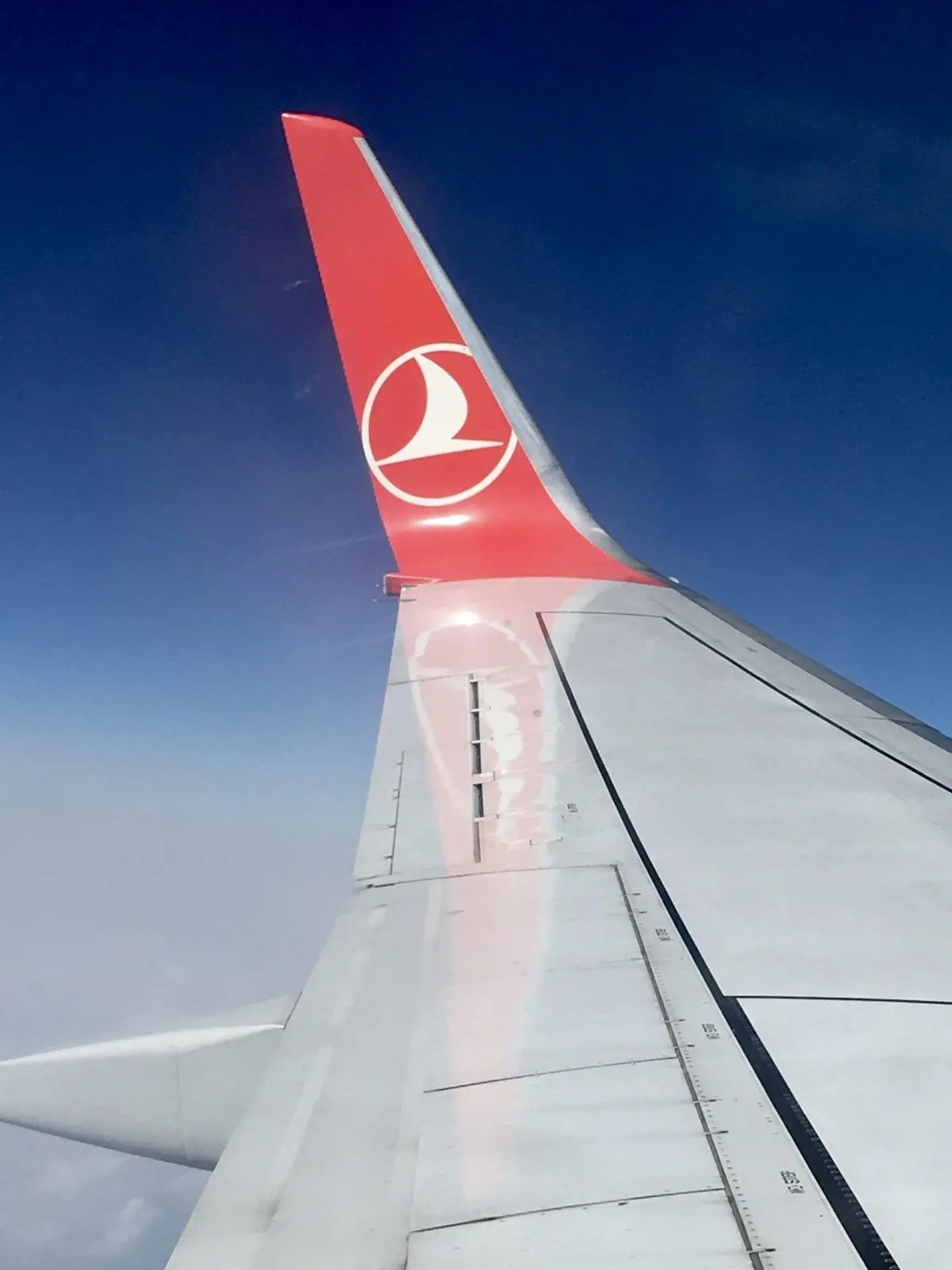 what's it like to fly as a gluten free passenger on Turkeish Airlines