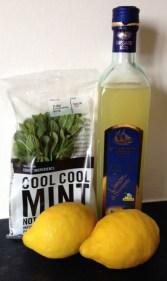 adventures of a gluten free globetrekker Gluten Free Recipe Challenge: Mint & Limoncello Granita Gluten Free News