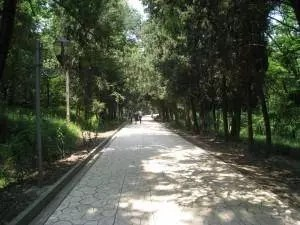 adventures of a gluten free globetrekker 7 Fun Things To Do in Tirana, Albania Albania Gluten Free Travel International