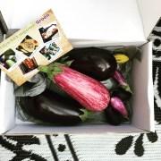paars is het nieuwe groen aubergine