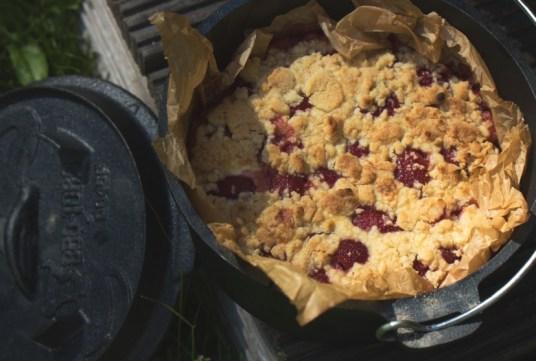 Erdbeer-Quark-Streuselkuchen im Dutch Oven