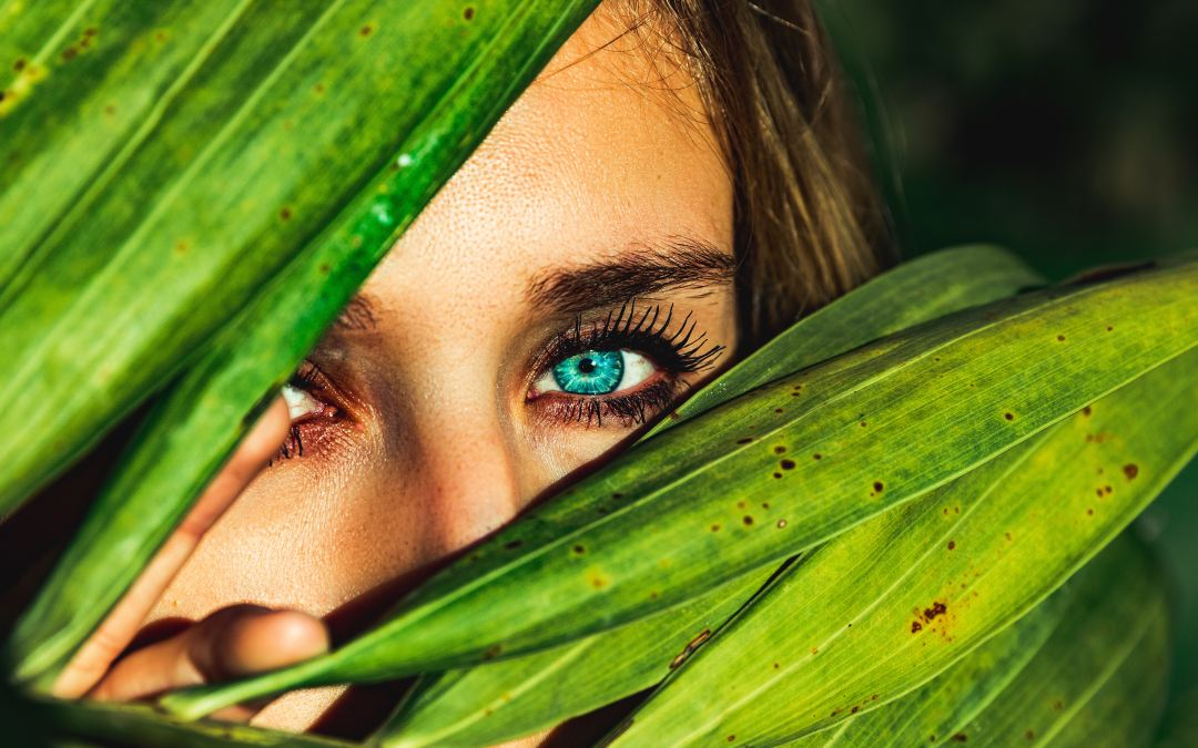 Can Green-Lipped Mussel Oil Benefit Your Eyes?
