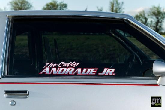 ANDRADE-15