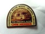 cmw-pin