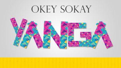 Photo of MusiC :: Okey Sokay – Yanga! | @okeysokay