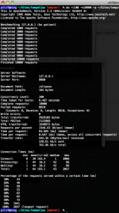 Screenshot of ab running in a terminal