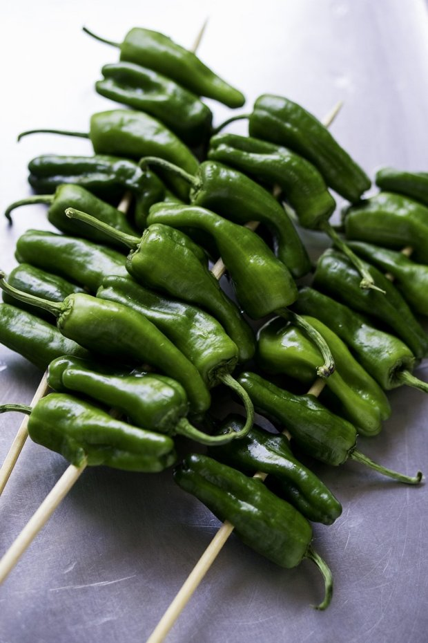 Grilled Shishito Peppers With Chimichurri Sauce