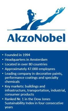 An interview with Ruud Sanders, AkzoNobel - Go-Businness nl