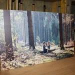 { Review } – Fotoafdruk op Dibond van Photogifts + Winactie