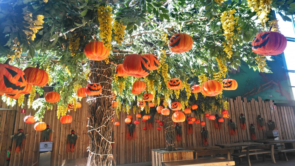 Spanning en plezier tijdens de Halloween Days & Nights in Toverland