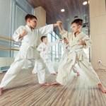 Een vechtsport voor kinderen: Go of No Go?