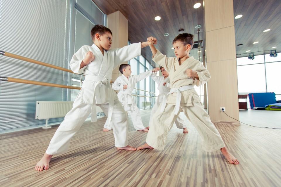 vechtsport kind