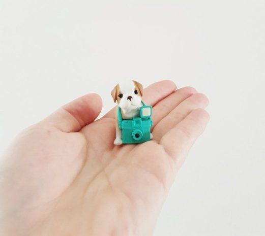 Studio pets hondjes grootte