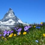 5 redenen voor een zomervakantie met kinderen naar Oostenrijk – Hohe Tauern