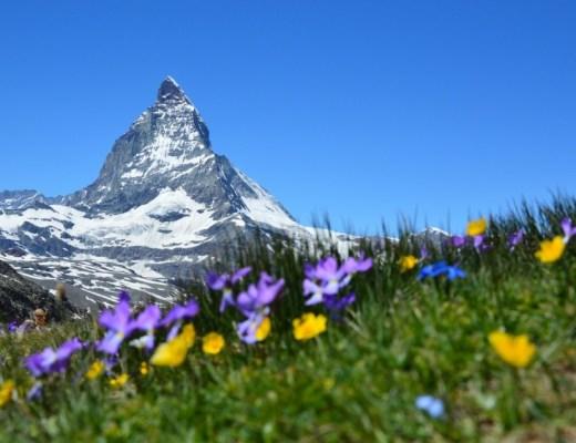 Oostenrijk-Hohe Tauern alpine review met kinderen