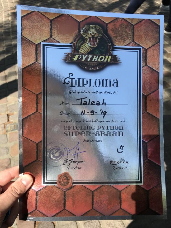 diploma python