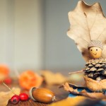 7x herfstknutsels met spulletjes uit de natuur