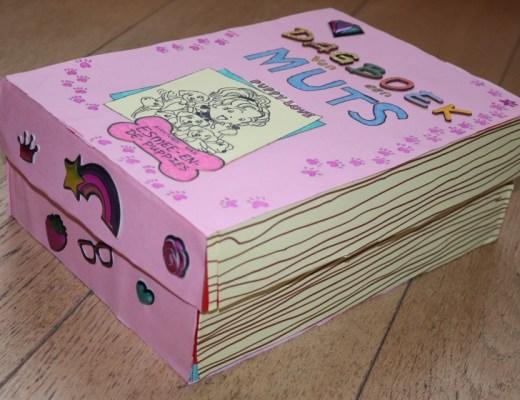 Dagboek van een Muts surprise voor Sinterklaas knutselen