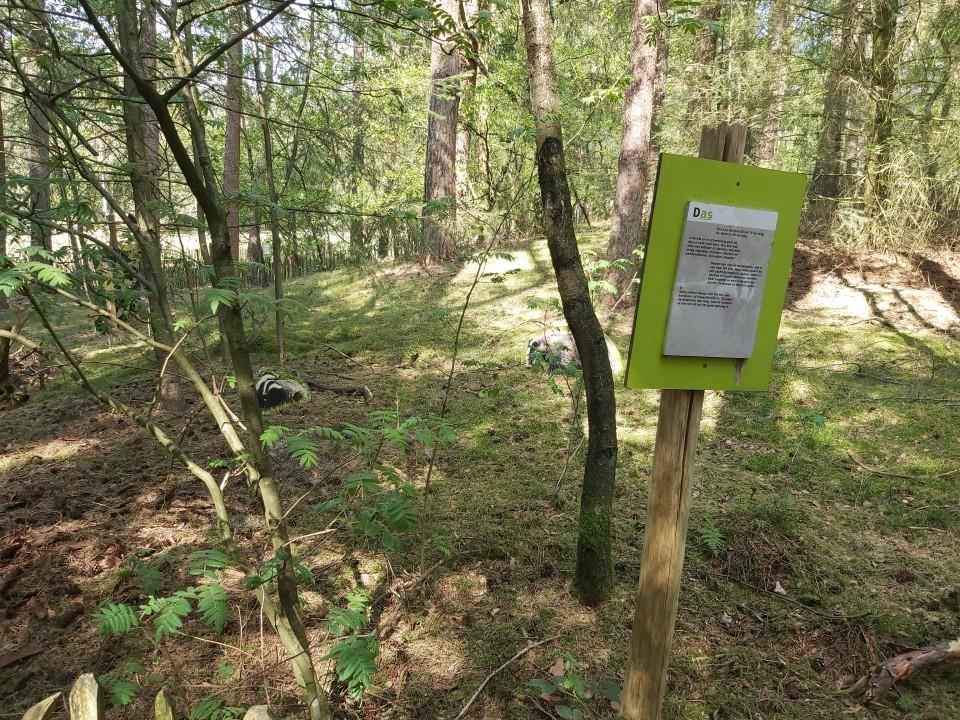 Naar het bos tijdens de anderhalvemetersamenleving