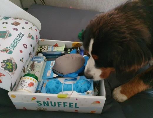 Verwen je hond iedere twee maanden met een Snuffelbox!