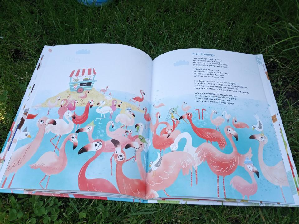 De versjes van Friet Flamingo maken je vrolijk, prikkelen je fantasie maar laten je tegelijkertijd ook nadenken. Geschikt voor jong en oud!