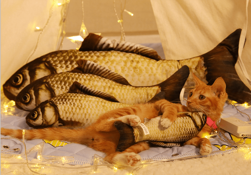 Realistic looking fish kicker cat toy