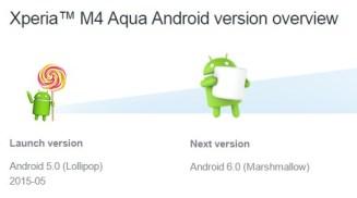 Welche Android-Version kommt als nächstes?