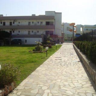 garden1 (Large)