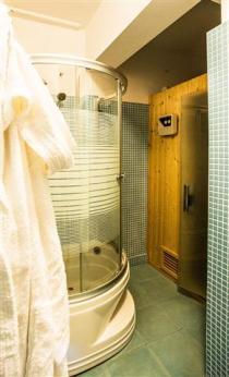 Elektra-Hydro-shower-Sauna (Custom)