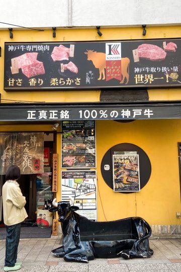 Kobe Tanryu