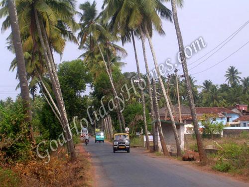 Arpora village in Goa Goa Arpora village information