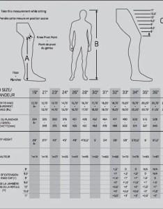 Size chart also warrior ritual  senior goalie leg pads rh goaliemonkey