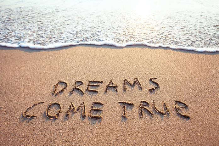 The Skill You Need To Make All Your Dreams Come True And How To Get It Today