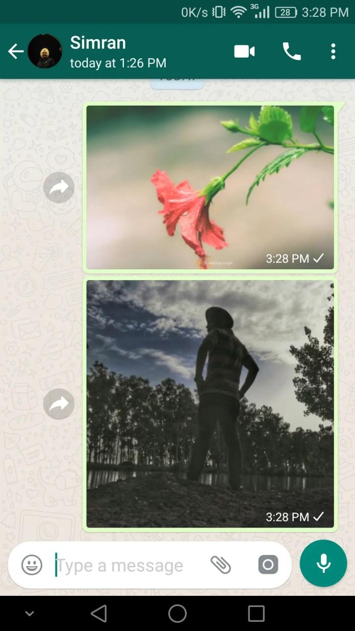 WhatsApp Beta V2.17.91