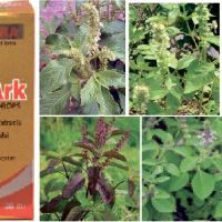 WHAT IS TULSI ARK?