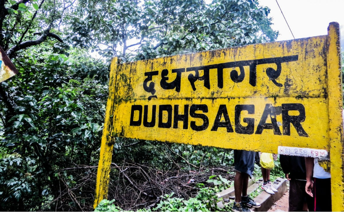 Planning to Visit the Dudhsagar Waterfall in Goa?