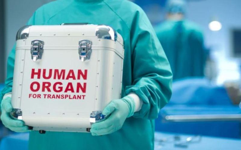 Organ Harvesting Case at Goa Medical College