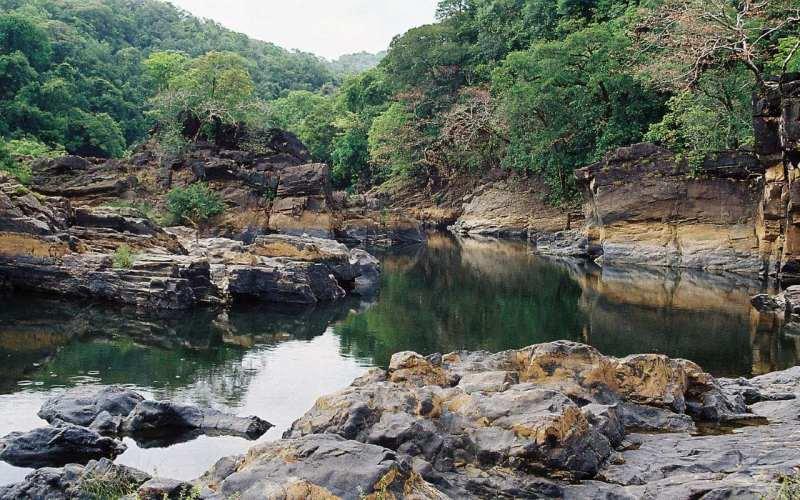 Mhadei Wildlife Sanctuary Goa