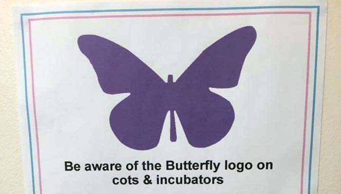 Go Ask Mum Grieving Mum Creates Purple Butterfly Stickers to Help Other NICU Parents  Go Ask Mum