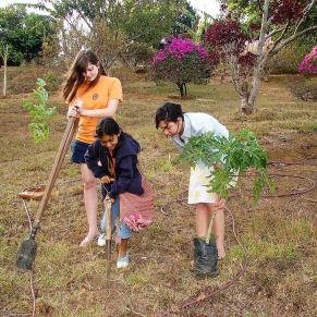 Kids planting trees in Costa Rica