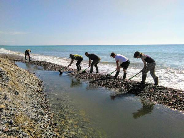 It also helps improve water flow from the wetlands into the sea! Join the GOAT Volunteers team in Spain to help out!